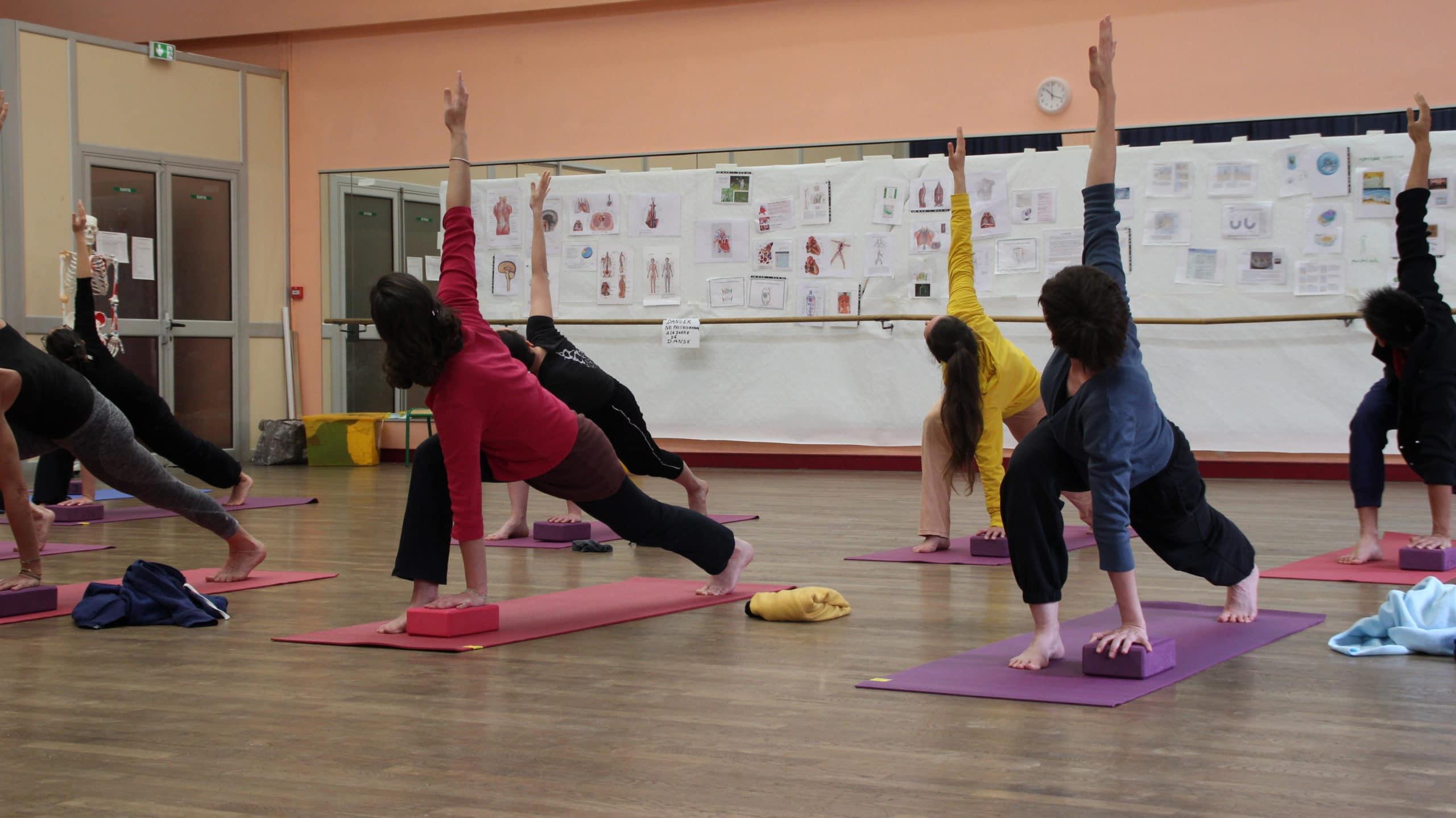 formation anatomie pour le yoga Paris